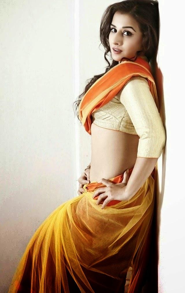 Vidya Balan Pics 2016