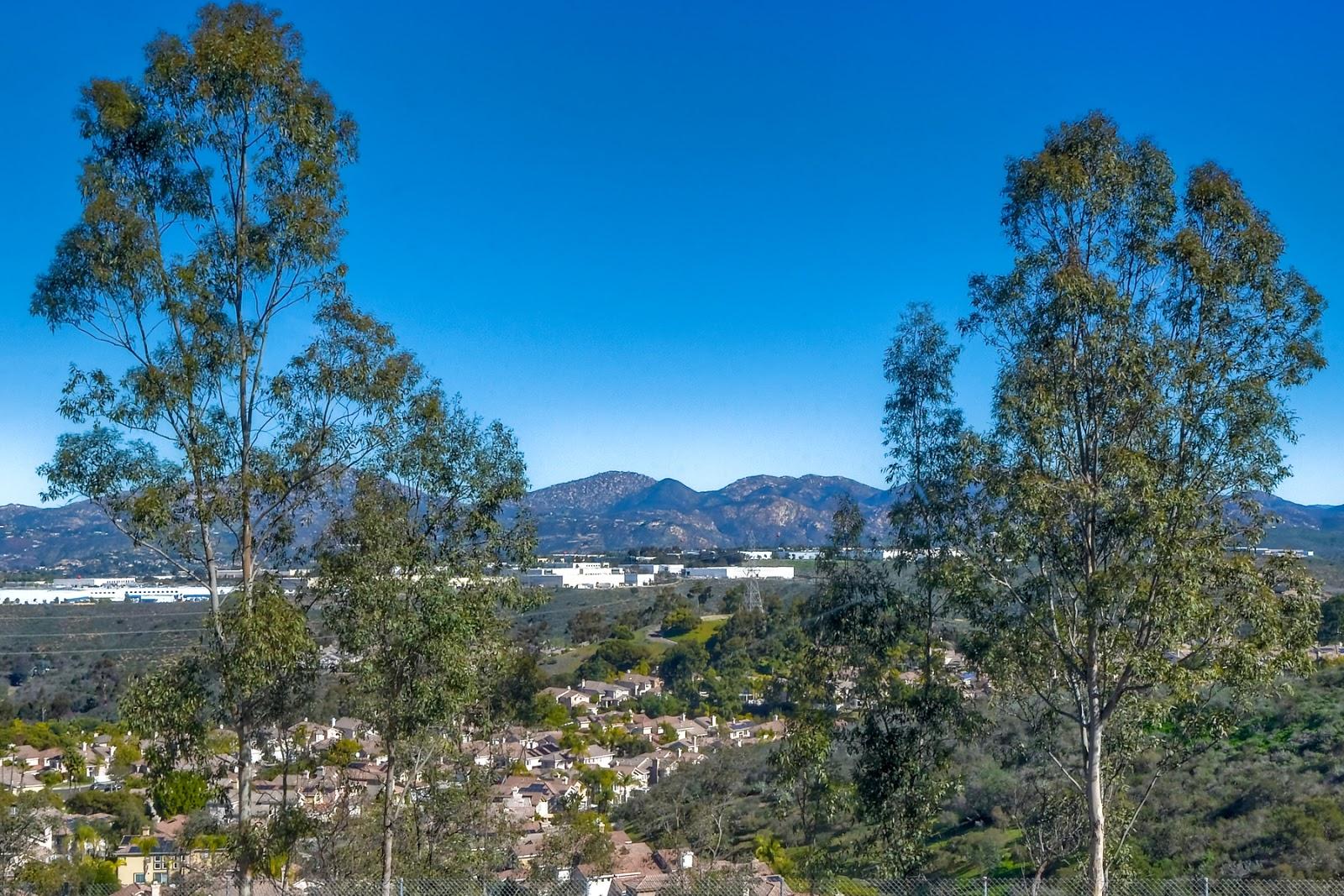 San Diego Realtor Chris Howe Realty