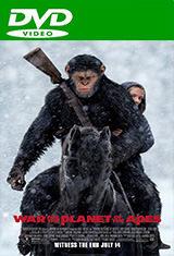 El planeta de los simios: La guerra (2017) DVDRip Latino AC3 5.1