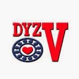 DYZV Bearing