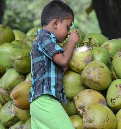 ಎಳನೀರು - Tender Coconut water - 18 benefits