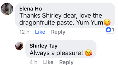 luxury haven snowskin mooncake testimonials elena