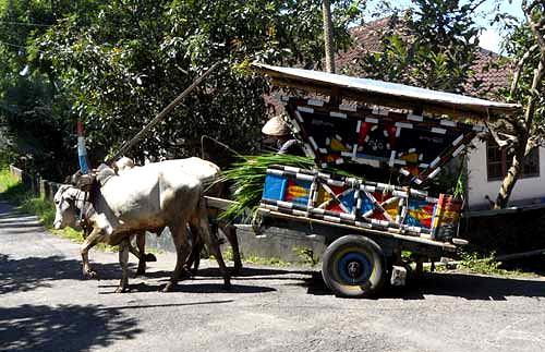Epictravelers - Gerobak transportation