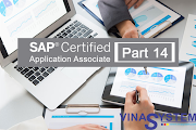 Bộ câu hỏi chứng chỉ SAP Business One (Phần 14)