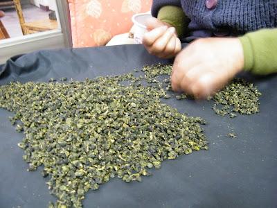 2014 鹿谷春茶