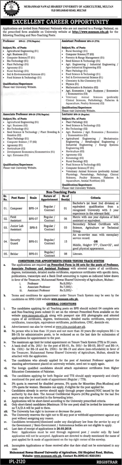 Latest Jobs in Mohammad Nawaz Sharif University of Agriculture Today 18 Feb 2018