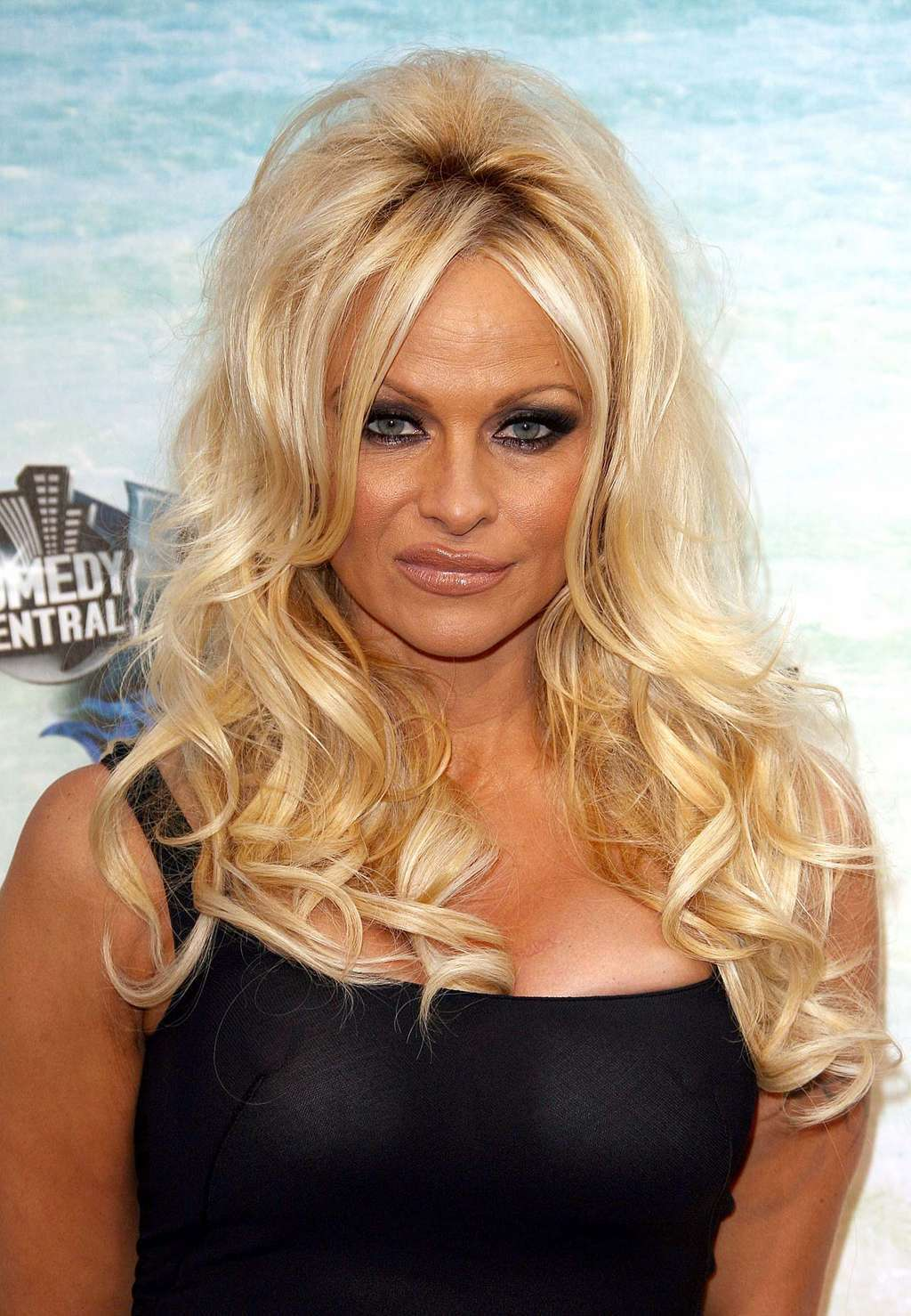 Pamela Anderson Big Cleavages Photos  My 24News And -8250