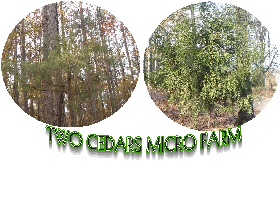Two Cedars Micro Farm