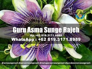 penyelarasan-guru-asma-sunge-rajeh-pamungkas