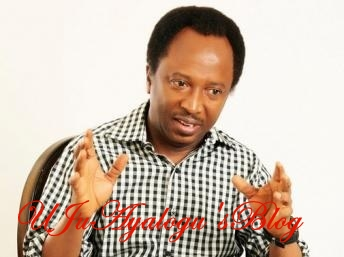 Vipers, boars once dethroned python, anaconda in forest – Sani responds to Aisha