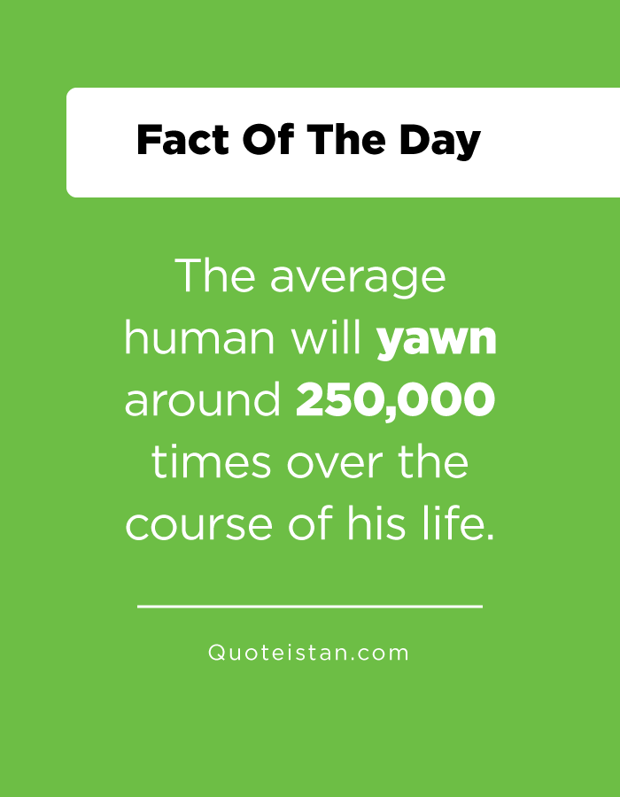 The average human will yawn around 250,000 times over the course of his life.