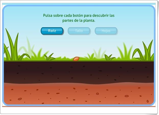 """""""Las plantas"""" (Actividad interactiva de Ciencias Naturales de Primaria)"""
