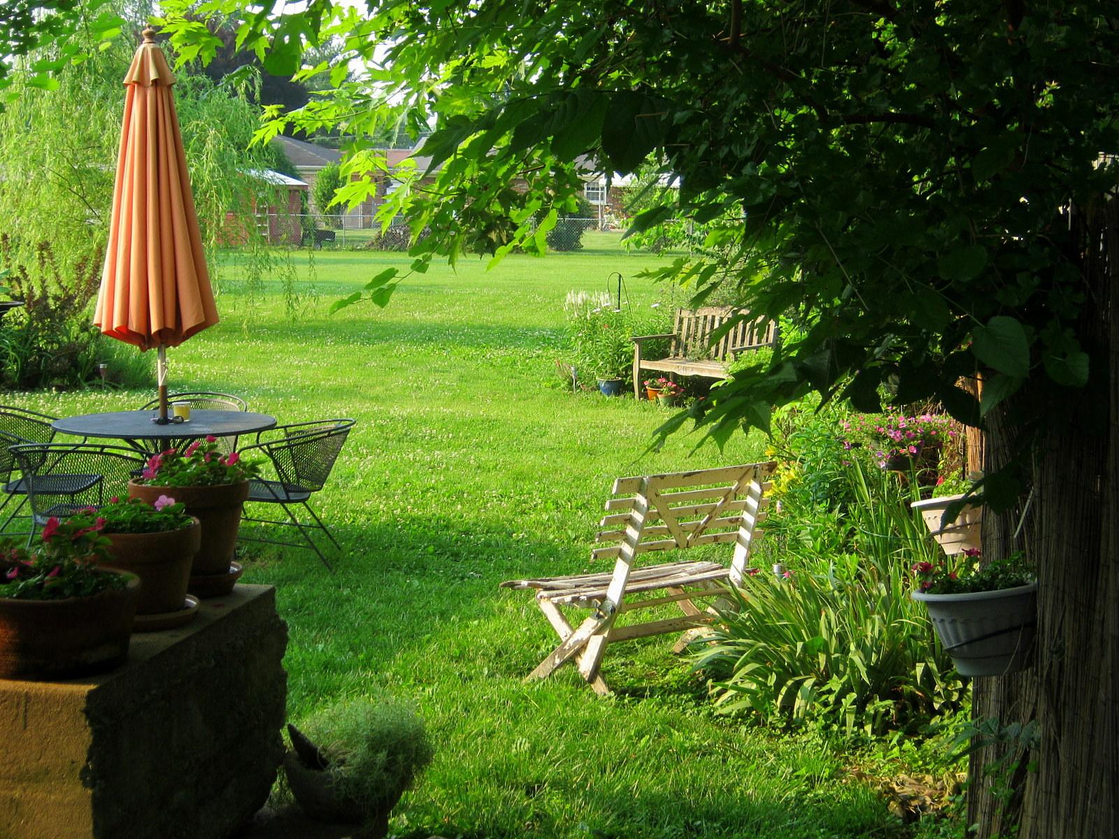 My Secret Garden: Lavender Garden Cottage: Blooming This Week