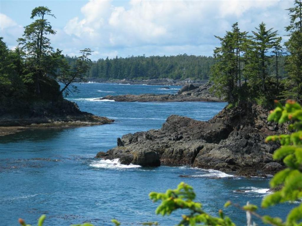 Pacific Rim National Park An Ideal Holiday | Natural Creations