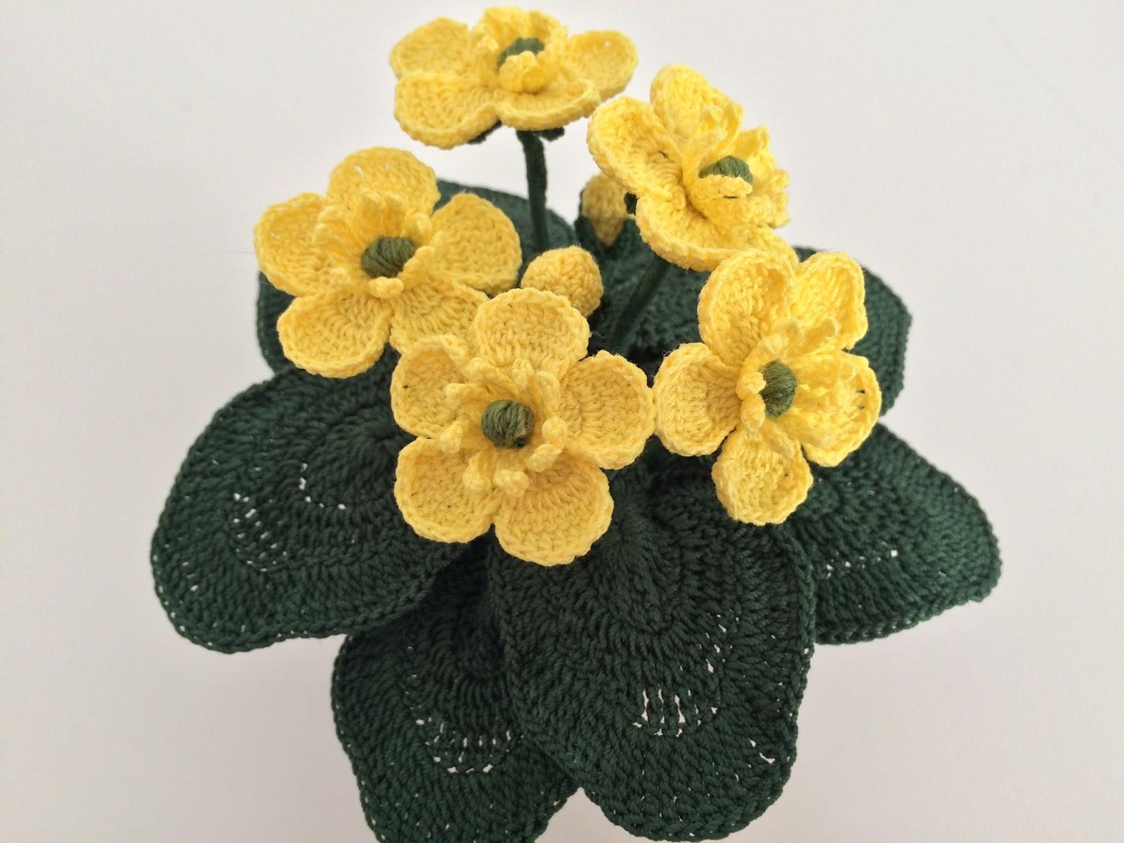 Il blog di sam how to crochet a buttercup for Il blog di sam piante grasse