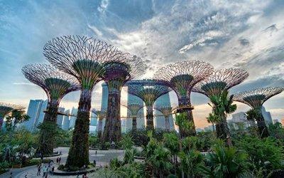 TripAdvisor Sebut 11 Destinasi Wisata Terbaik di Asia?