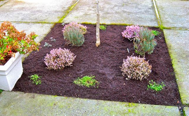 Seattle Garden Ideas The Magic Of Mulch