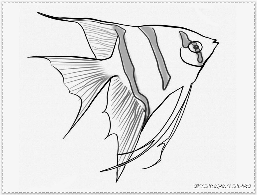 Coloring Pages About Fish
