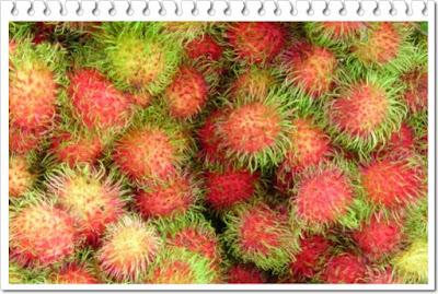 Rambutan,buah berambut dan memiliki segudang manfaat untuk kessehatan