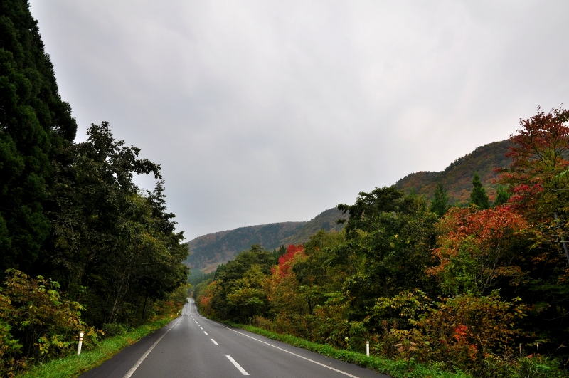 To the places various by car: 11月 2014