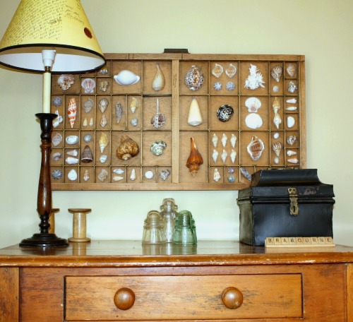 Antique Printer Tray Shell Wall Decor Ideas