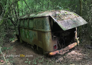 The 1965 VW Kombi bus spent 40-plus years in these woods.