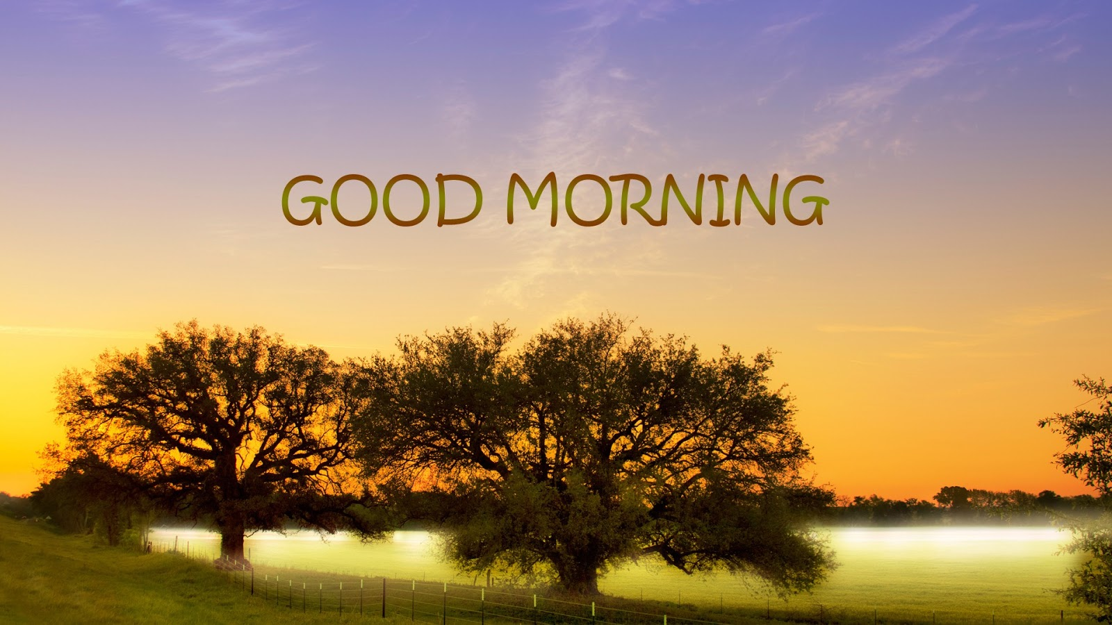 Best Good Morning Hd Wallpapers, Download Good Morning -6618