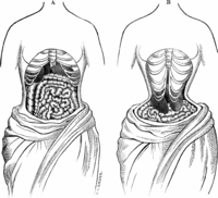 Health facts about Waist training
