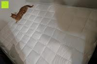 Katze: MESANA Premium Matratzen-Schoner | Größe: 140x200 cm, Höhe: 27cm | weiß aus Soft Touch Microfaser | 100% Polyester | Matratzen-Auflage auch für Ihr Boxspring-Bett und Wasserbett | Unter-Bett