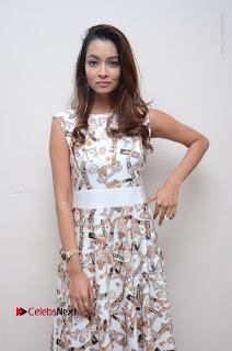 Telugu Actress Reshmi Thakur in Long Dress at Plus One ( 1) Audio Launch  0045.jpg