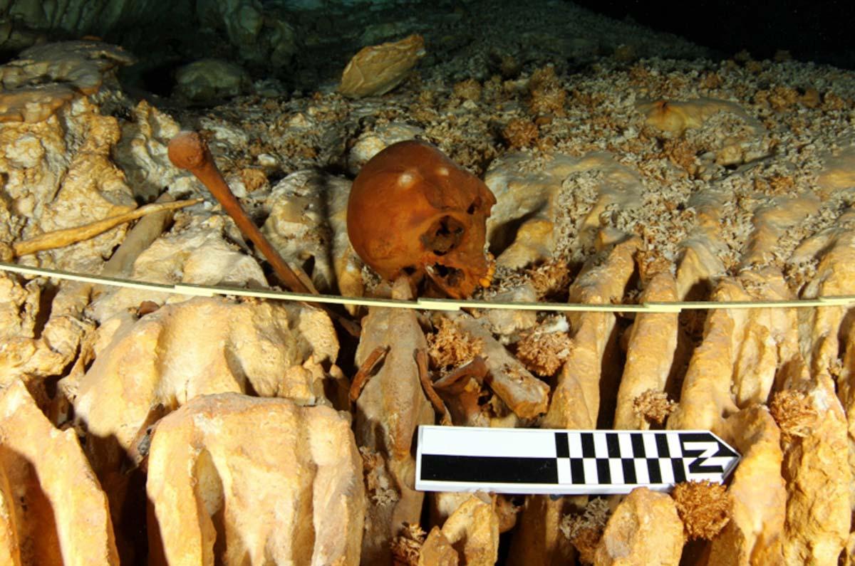 Hablan los huesos de Naia, el esqueleto más antiguo de América ...