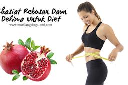 Khasiat Rebusan Daun Delima Untuk Diet