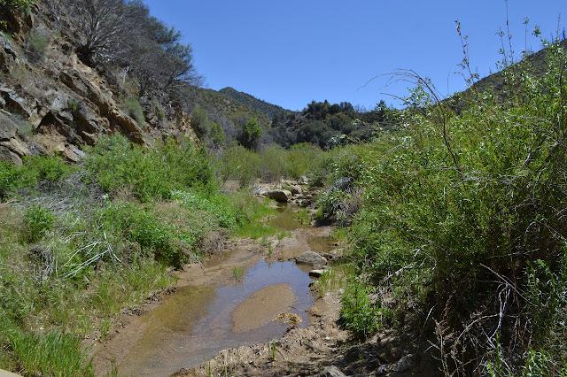 flow in sandy creek bottom