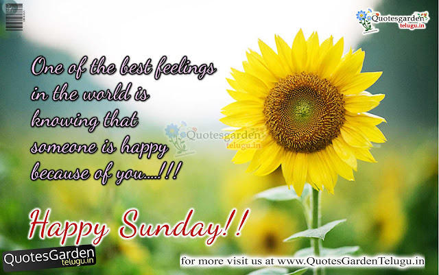 happy sunday quotes with flowers