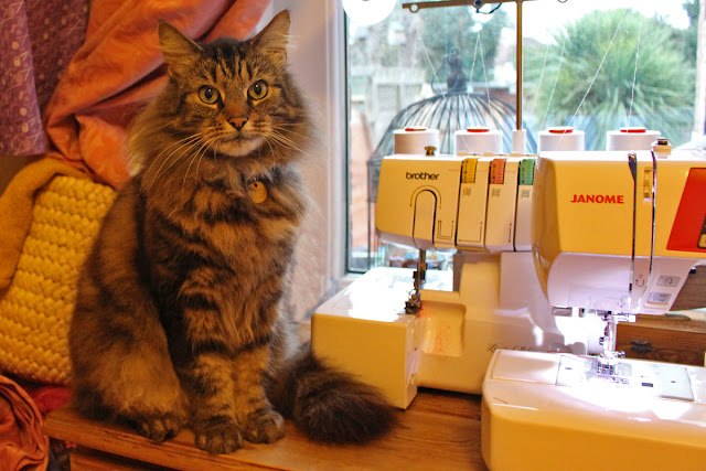Wendy's Week - UFO's & Flashing Lights - My Cat Beau helping me sew my 1950's Box Pleat Skirt