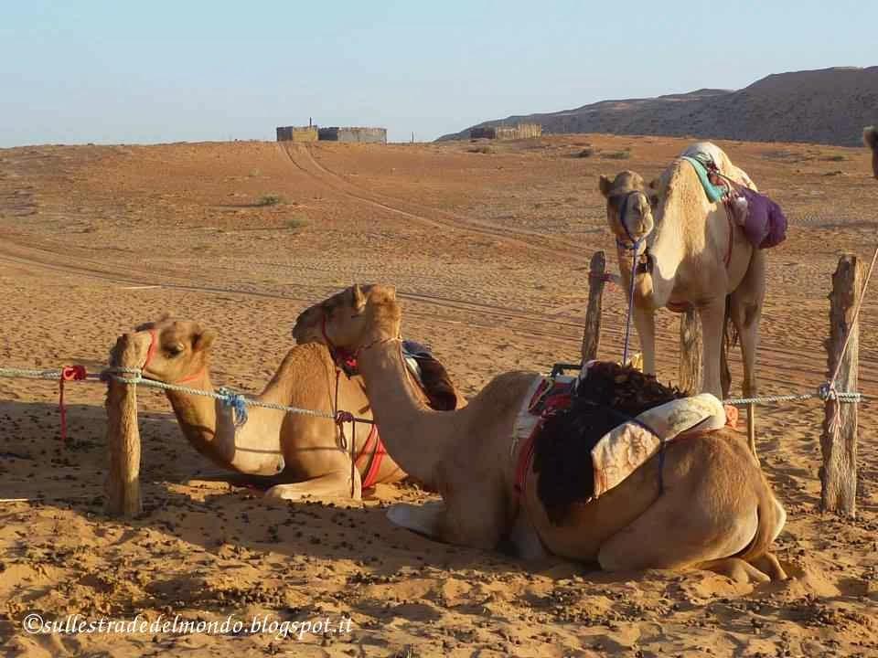 L'80% del territorio omanita è desertico