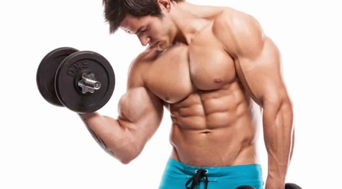 Cara Memperbesar Otot Lengan Dan Bicep Yang Benar