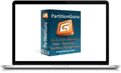 Eassos PartitionGuru Pro 4.9.5.508 Full Version