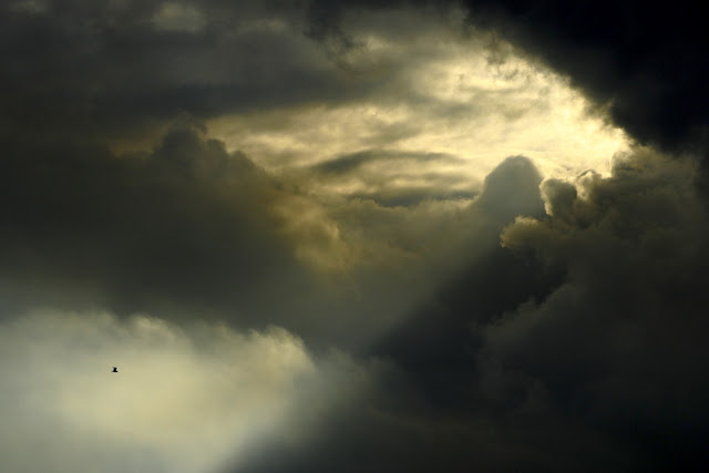 Vuelo de luz – Iván Morán G-R