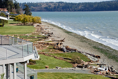 March 10,2016 Windstorm, South Fidalgo Island