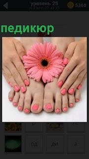 Пальцы ног и пальцы рук соединены вместе а в центре цветок. На ногах сделан педикюр розового цвета
