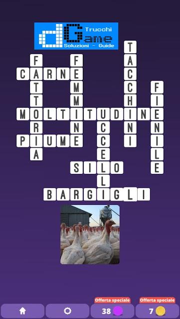 Soluzioni One Clue Crossword livello 30 schemi 1 - 15 (Cruciverba illustrato)  | Parole e foto