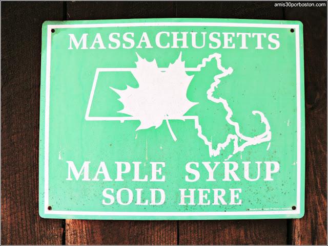 Sirope de Arce de Massachusetts