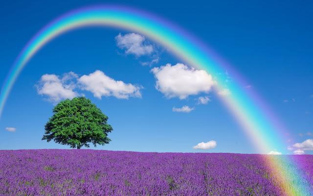 Bộ ảnh thiên nhiên, phong cảnh đẹp nhất FULL HD 5