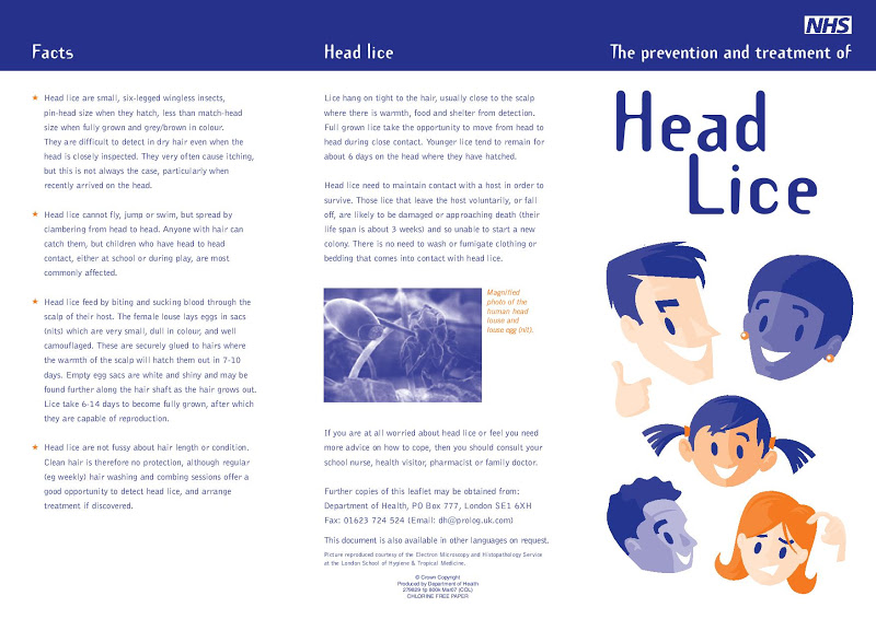 Nhs Head Lice Letter To Parents