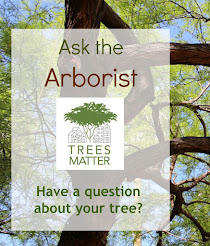 Ask an Arborist FaceBook Group