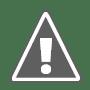 Review Payclick ,Native Terbaik Untuk Publisher Indonesia