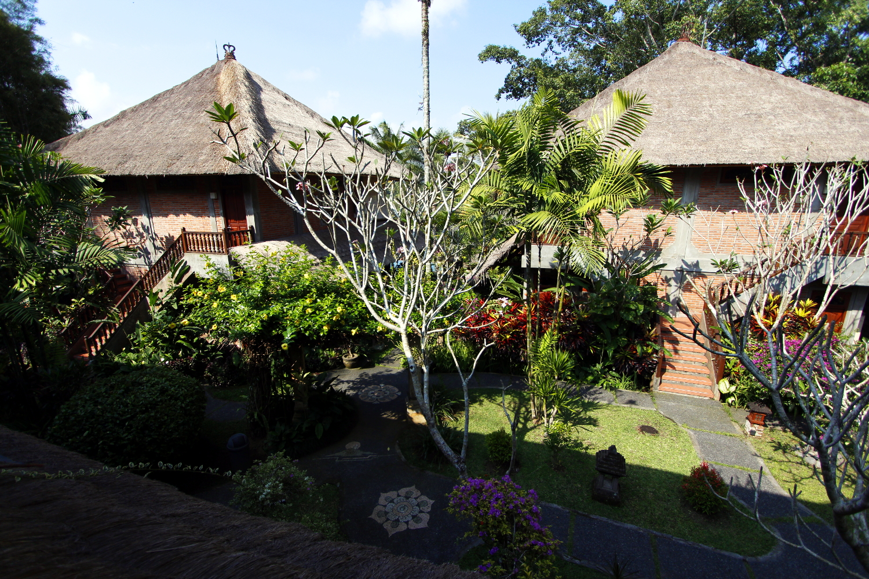 Vistas desde la terraza de la habitación del Bunga Permai (Bali)