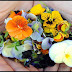 Edible Flowers With Superb Health Benefits