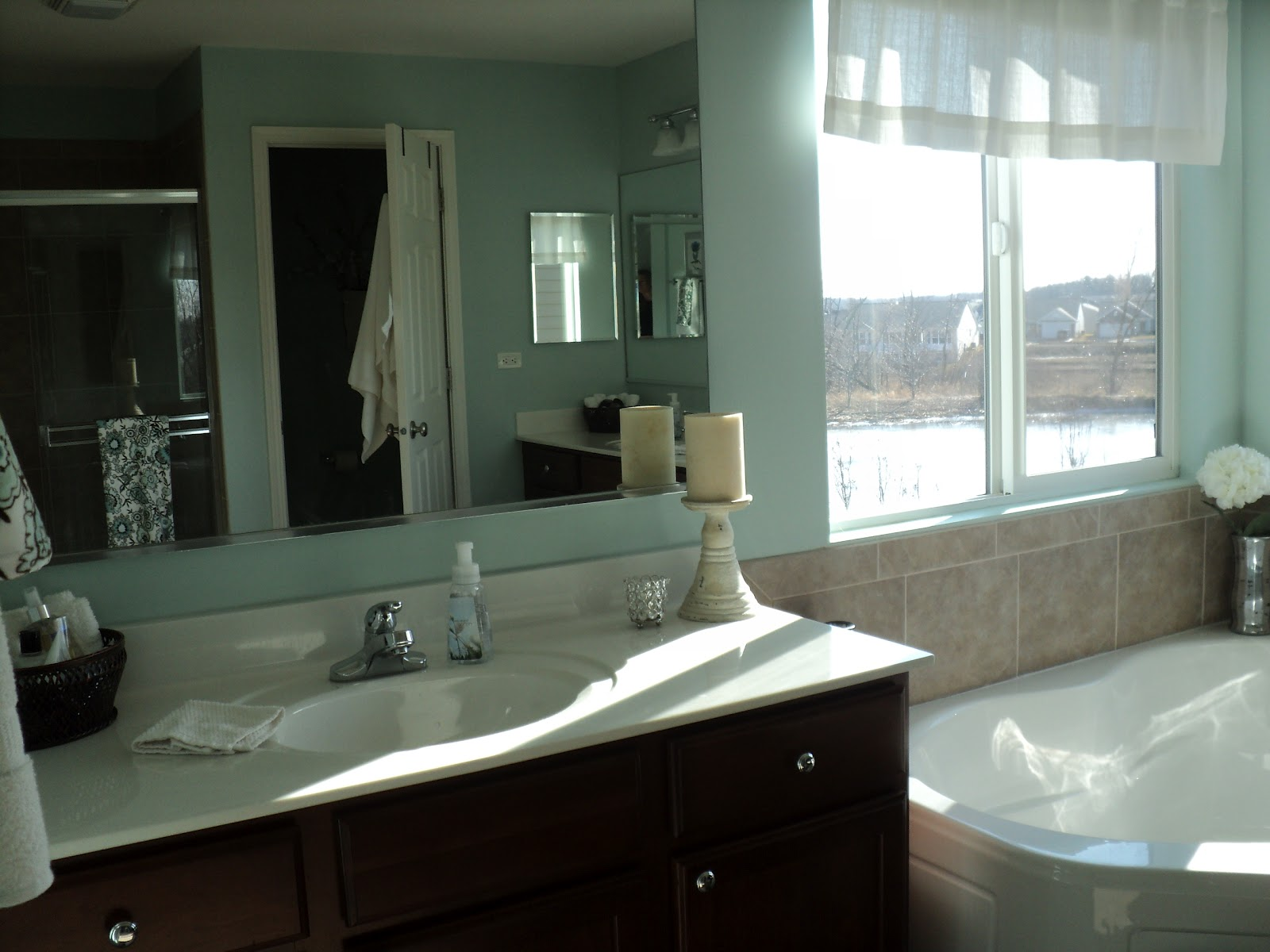 All Things that Make a House a Home Loving Blue in our master bathroom